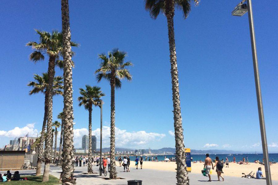 36 h Barcelona – Sport und Sightseeing